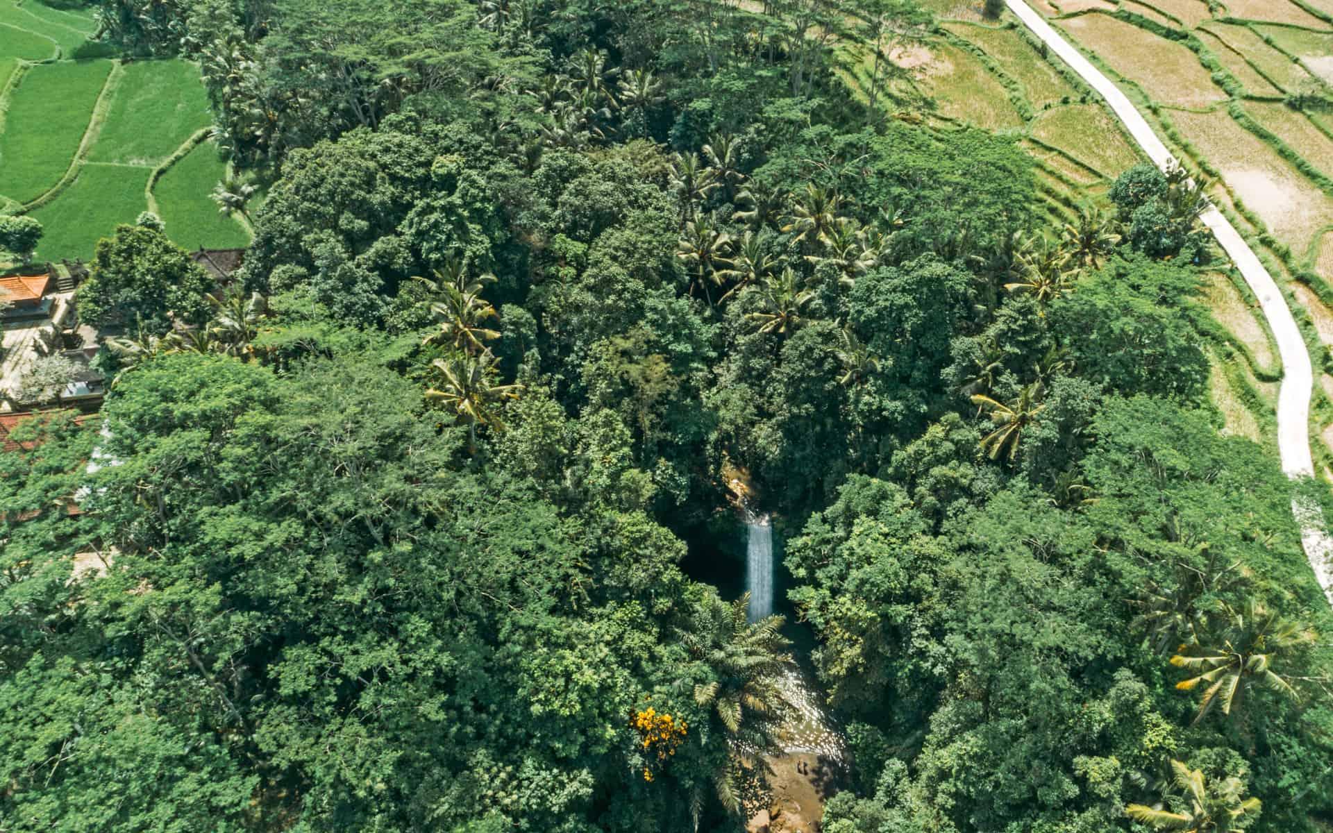 tibumana-waterfall-bali-overview