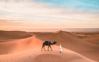 xaluca-morocco-desert