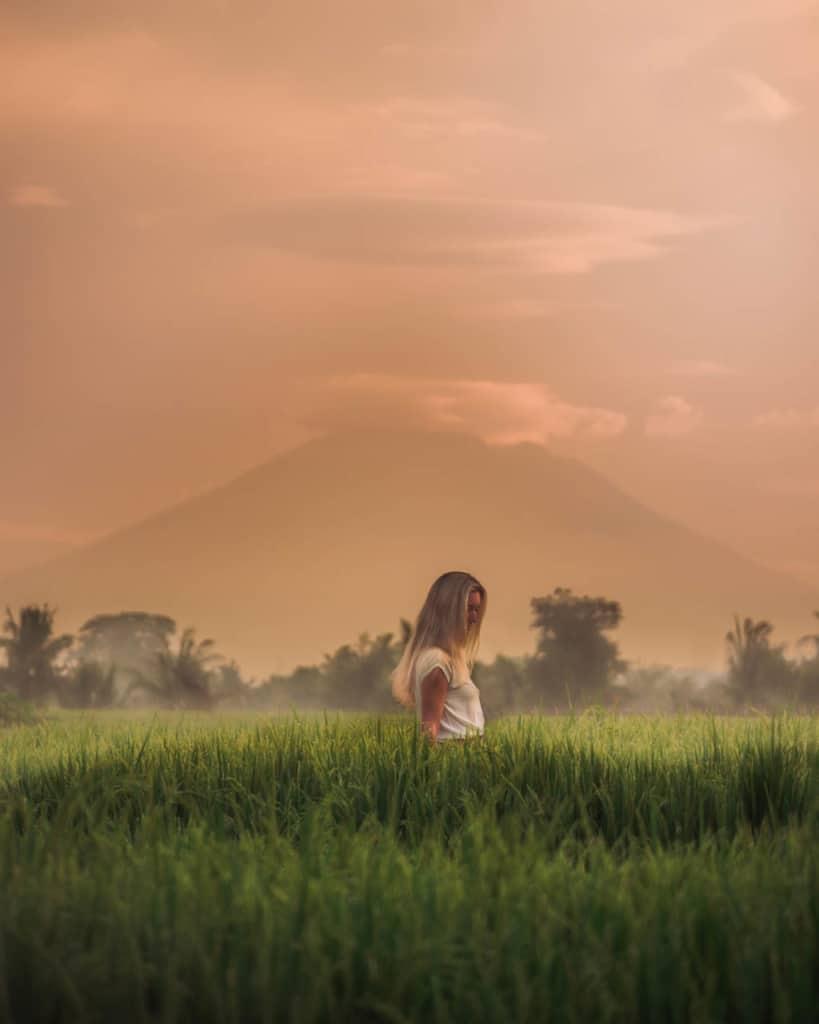 canggu-ricefields-telelens