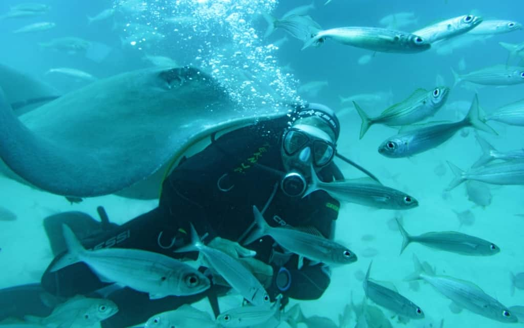 diving-koh-phangan
