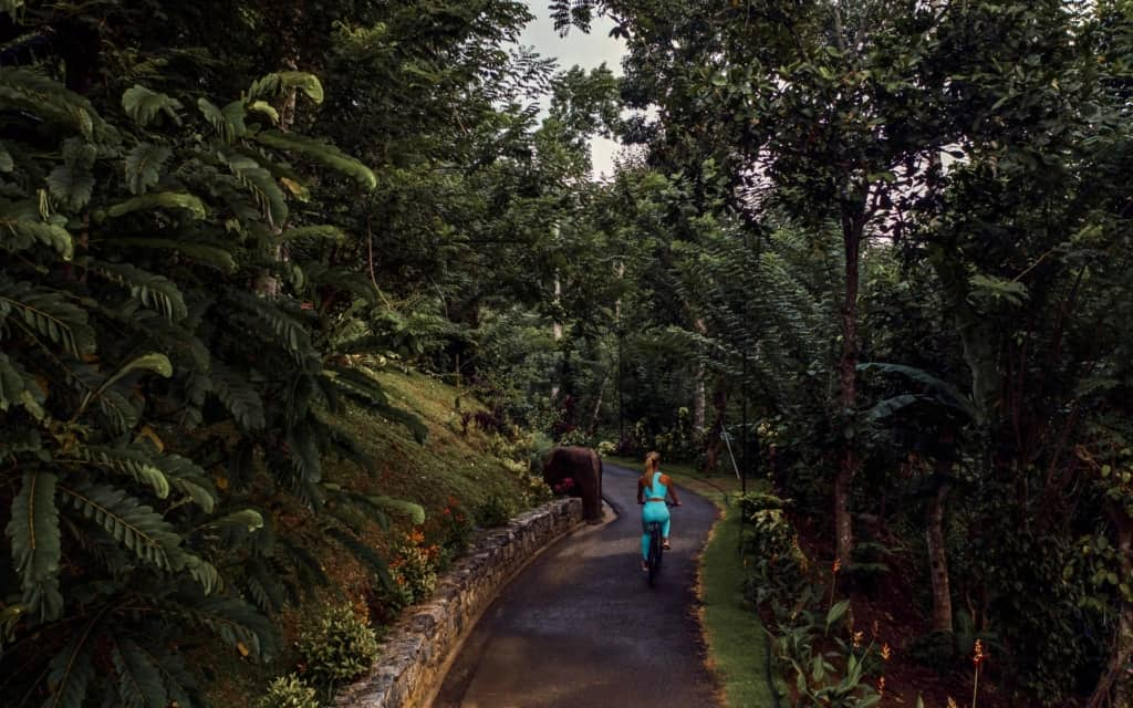 aarunya-nature-resort-kandy-mountainbike