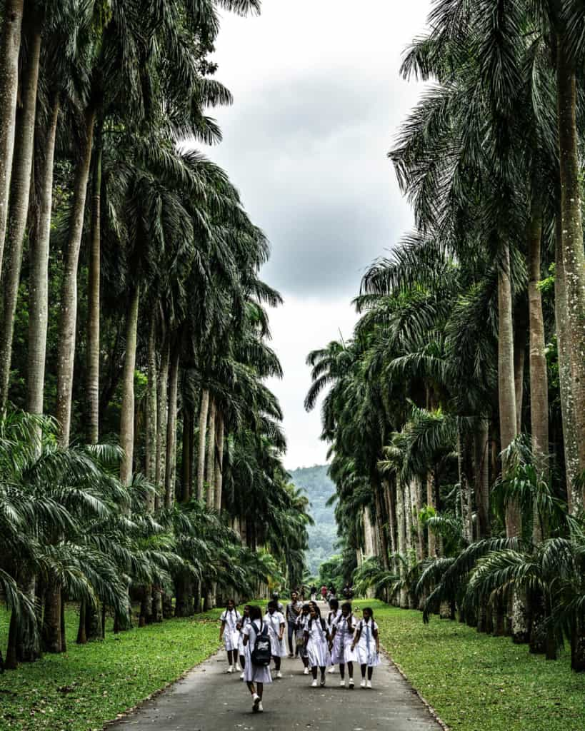 kandy-botanical-garden