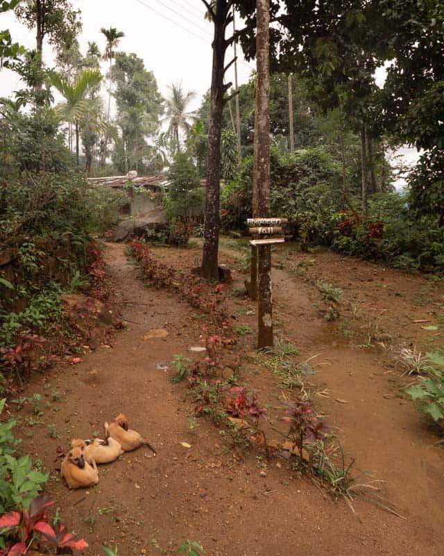 aberdeen-falls-sri-lanka-sign
