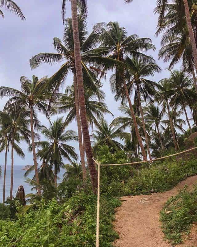 john-suwan-viewpoint-path