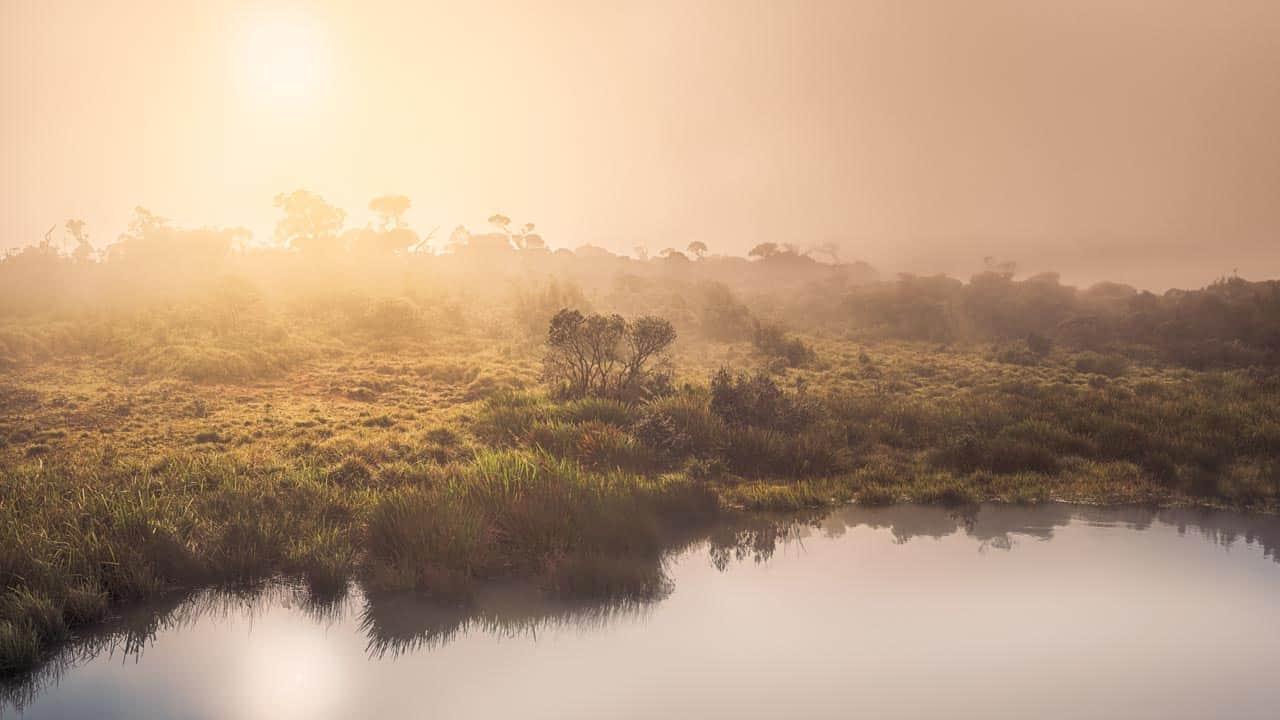 horton-plains-sunrise