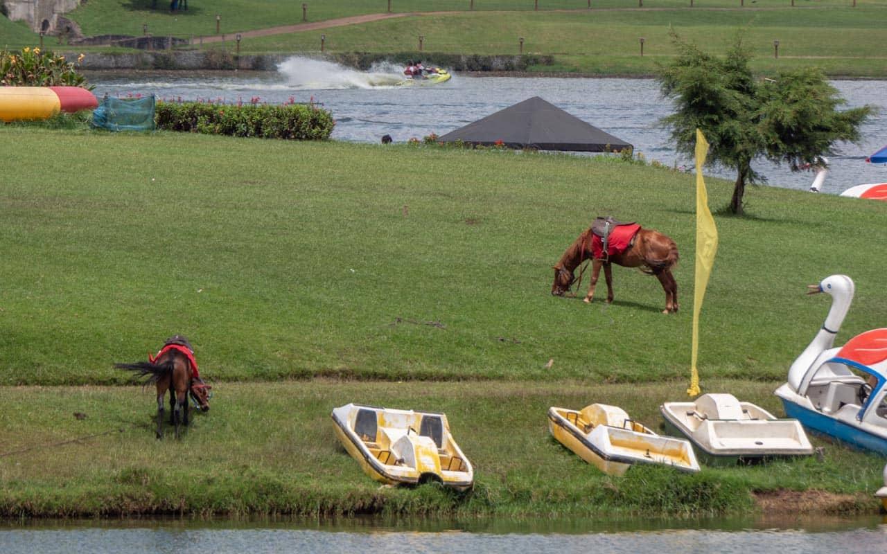 places-to-visit-nuwara-eliya-gregory-lake-activities