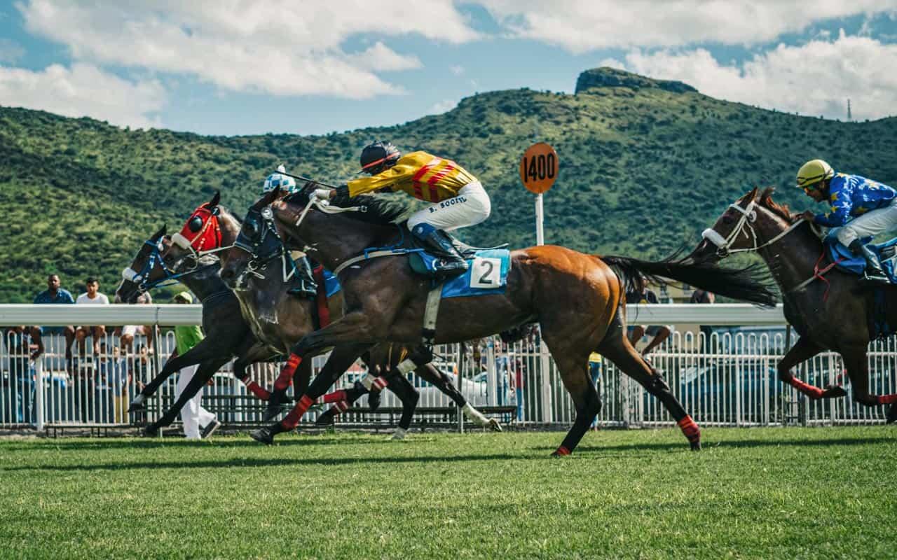 turf-club-horse-racing-nuwara-eliya