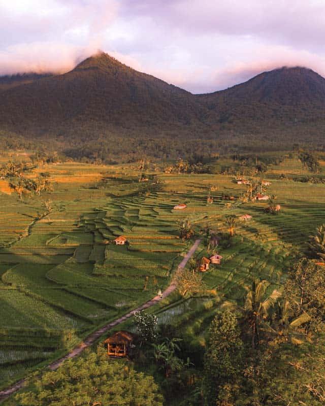 jatiluwih-rice-terraces-bali-couple