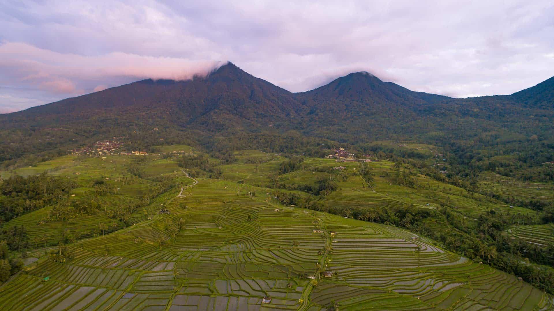 jatiluwih-rice-terraces-slider