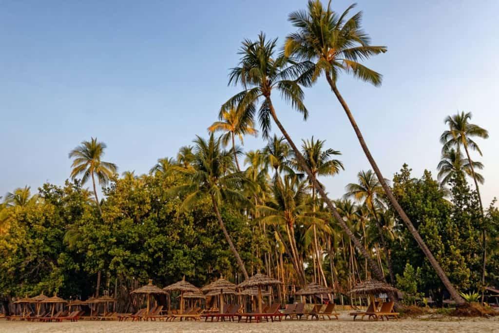 ngapali-beach-myanmar-palmtrees