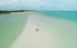 punta-mosquito-holbox