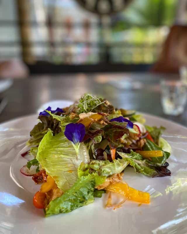seed-to-feed-koh-phangan-salad