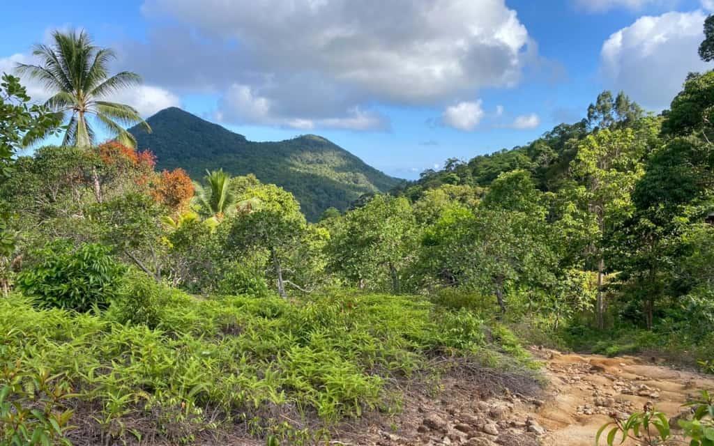 khao-ra-hike-view-trail
