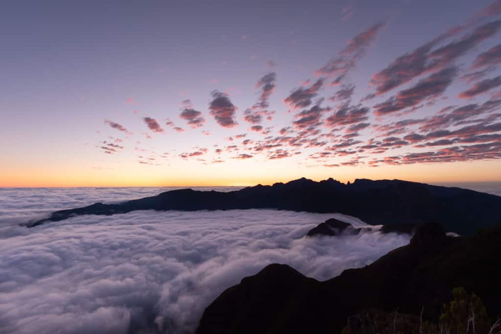 sunrise-bica-da-cana