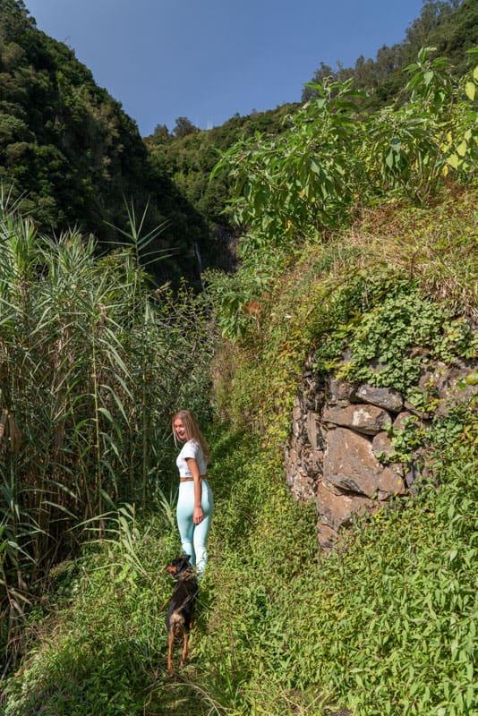 Agua-d'Alto-waterfall-levada-path