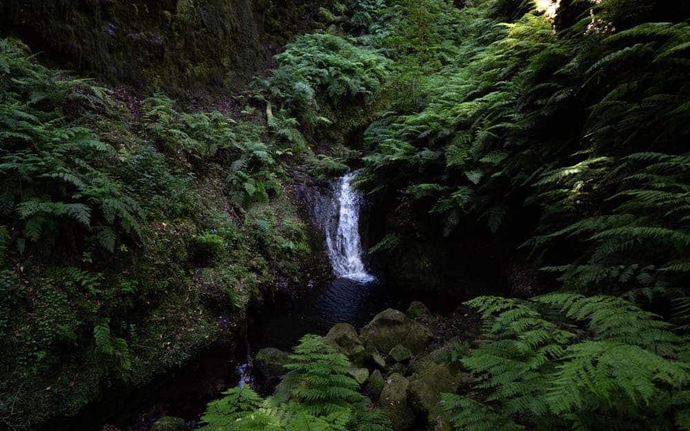 levada-do-rei-waterfall