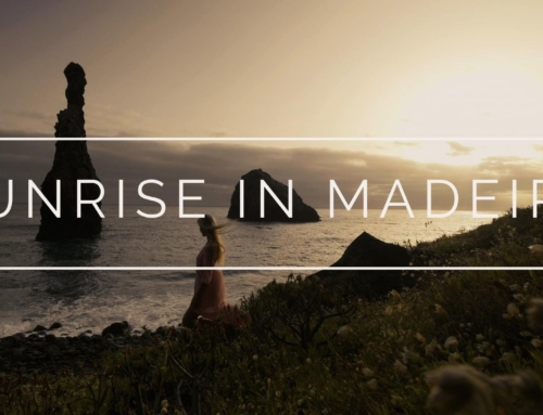 Madeira Island Portugal l Ilheus da ribeira da janela Sunrise