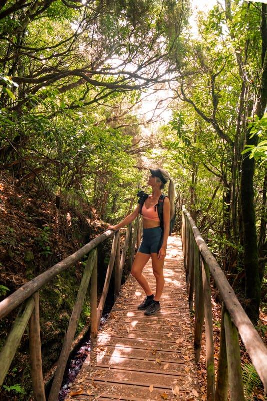 levada-dos-cedros-hike-bridge