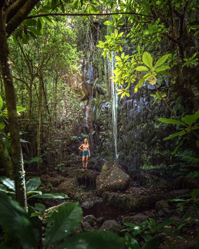 levada-dos-cedros-waterfall-forest