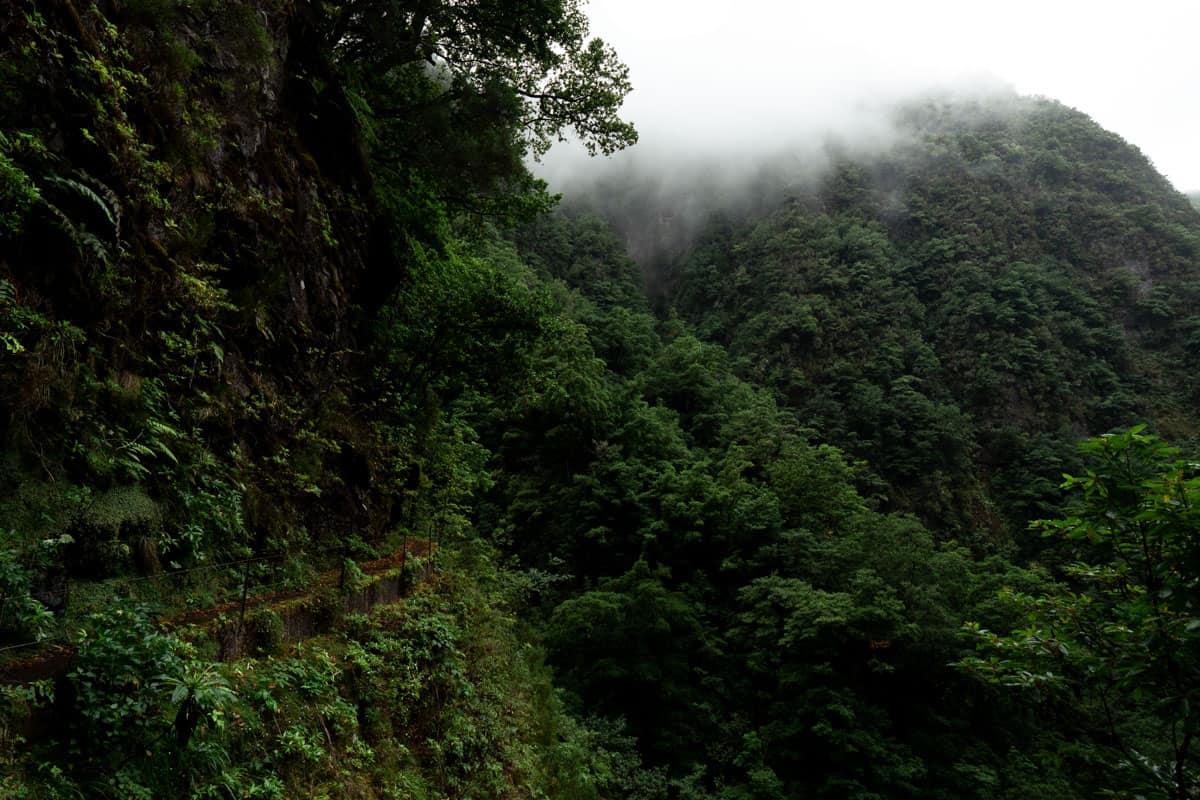 levada-faja-do-rodrigues-path-mountains