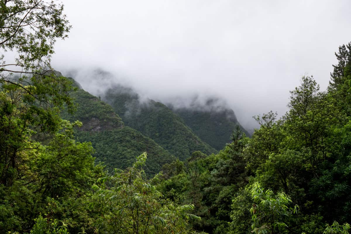 levada-faja-do-rodrigues-valley-moody
