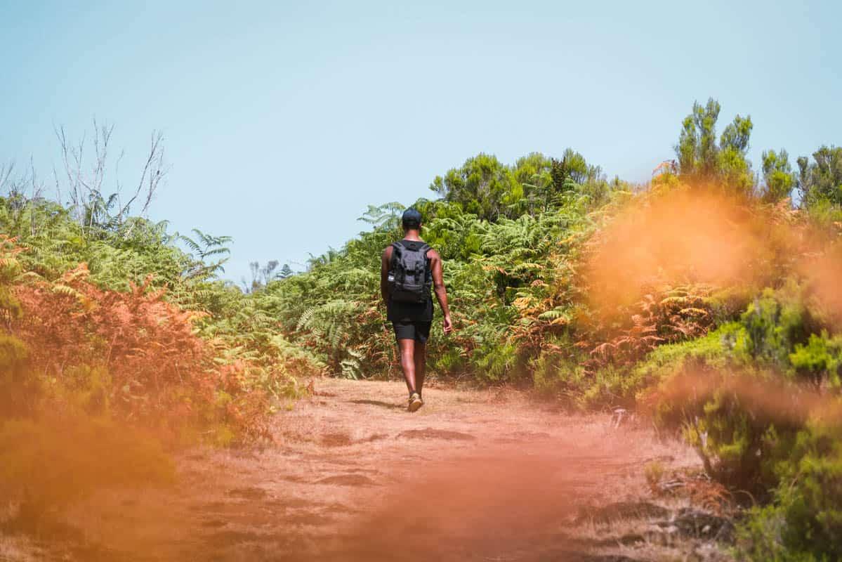 vereda-do-fanal-hike-path