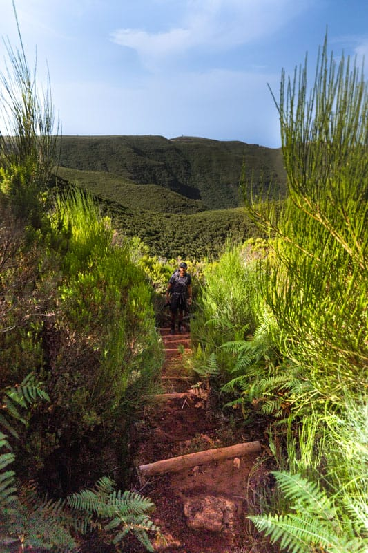 vereda-do-fanal-path-view