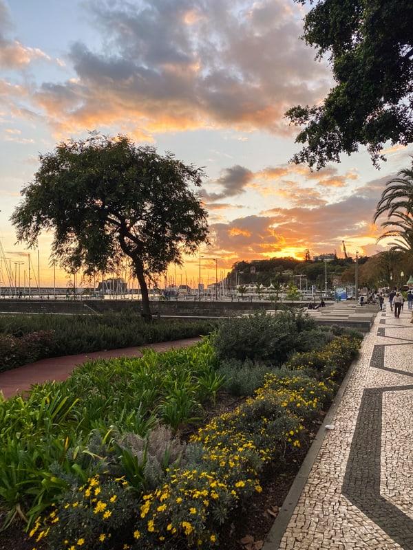 boulevard-sunset-funchal-madeira