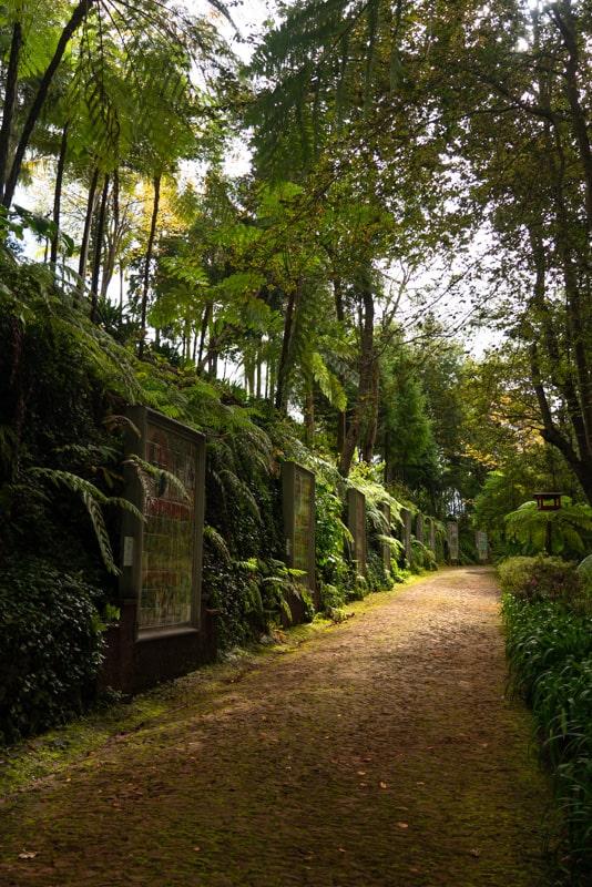 monte-palace-garden-lane