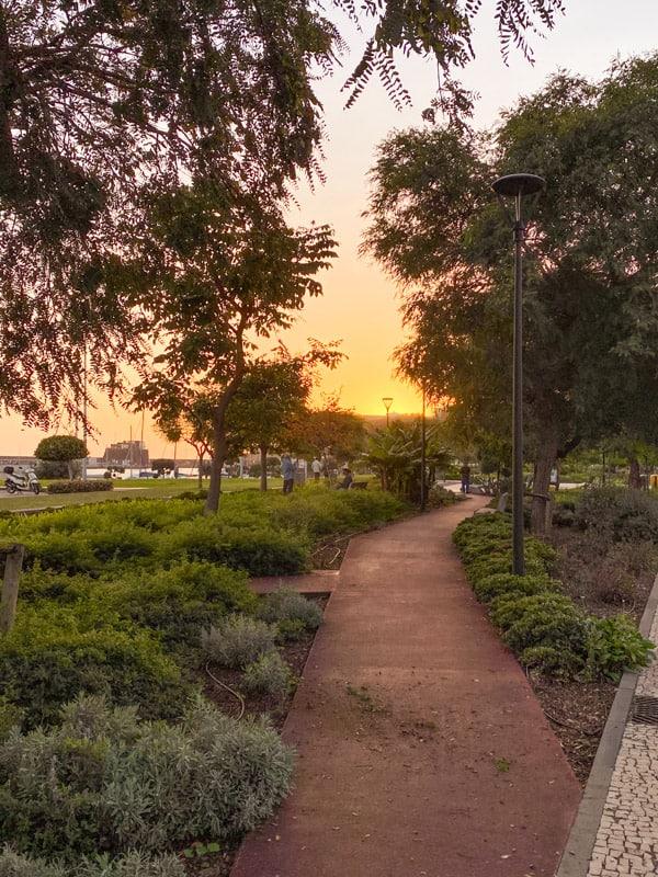 sunset-boulevard-funchal
