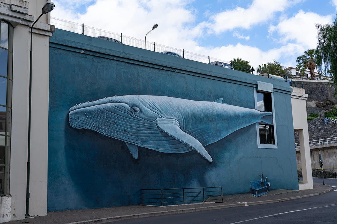 whale-streetart-funchal
