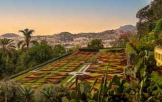 botanical-gardens-madeira-sunset