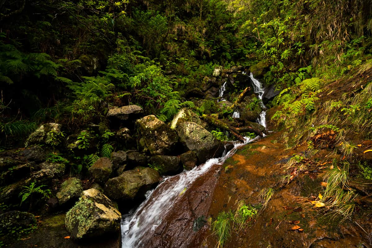 folhadel-hike-madeira-waterfall