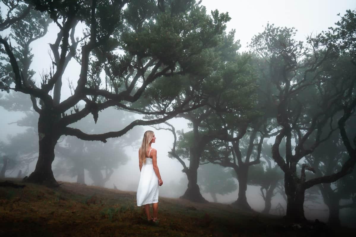 ilse-fanal-foggy-forest