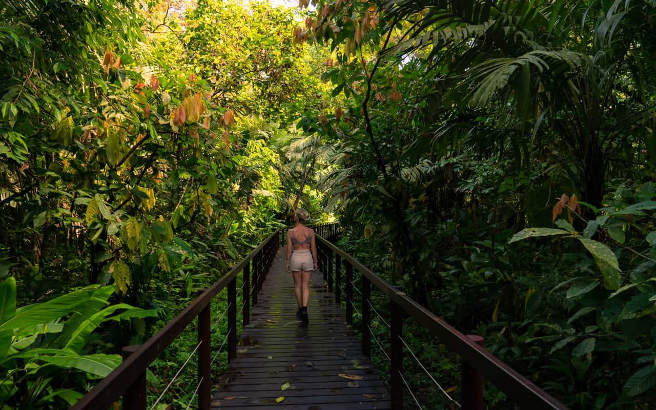 cahuita-national-park-trail